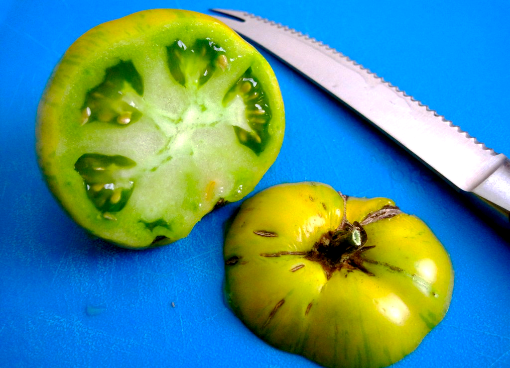 A green zebra tomato sliced open with a knife.