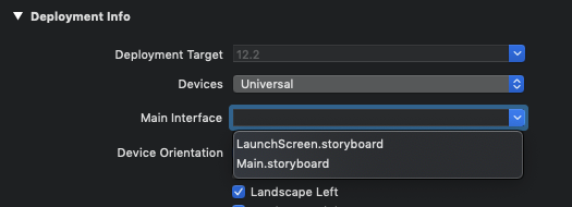 Disabling the initial storyboard in Xcode