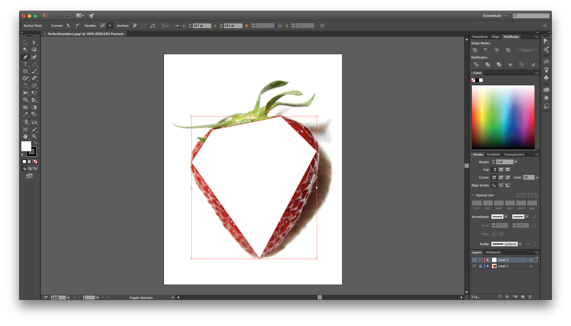 Drawing In Illustrator For Beginners