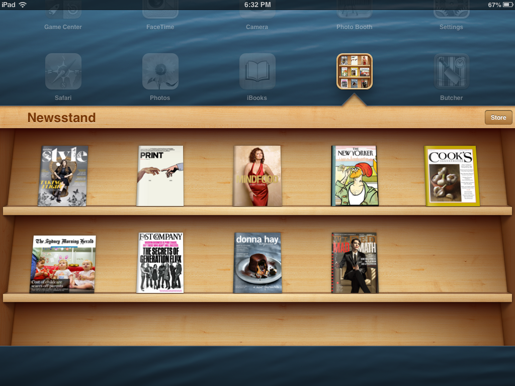 Apple shelves in iOS7 (2013)